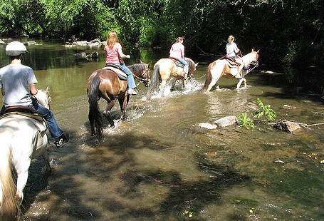 trail ride through water